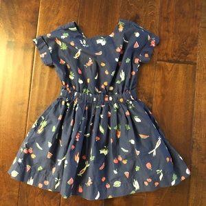 Jcrew Girl dress